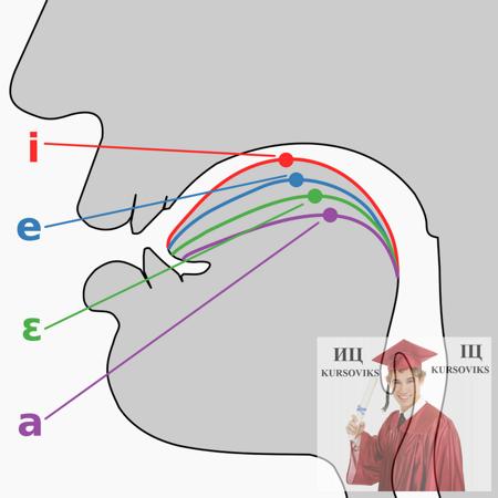 Практическая-фонетика-английского-языка