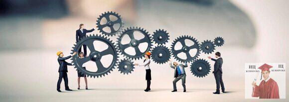 сферы применения операционного менеджмента
