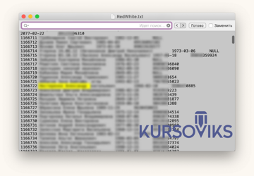 база данных, БД, ячейки таблицы