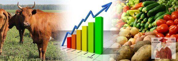важные аспекты экономики аграрных предприятий